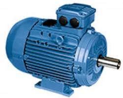 Motores WEG Línea W21