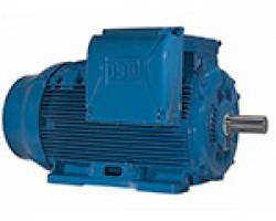 Motores  WEG Línea w22